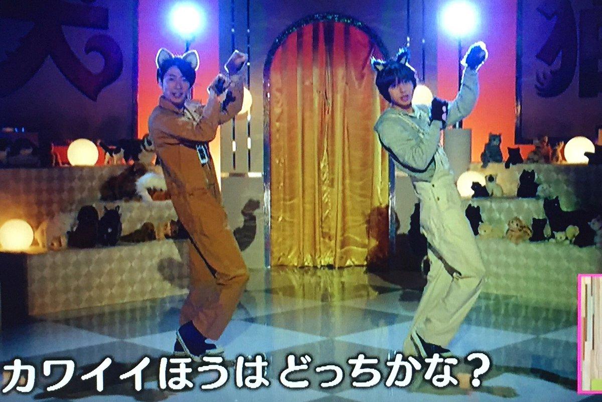 嵐・相葉雅紀とHey!Say!JUMP伊野尾慧が神ユニットで犬猫ダンス!CD発売をファン熱望