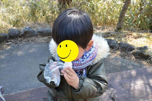 DSC_7495_20170319_3560.jpg