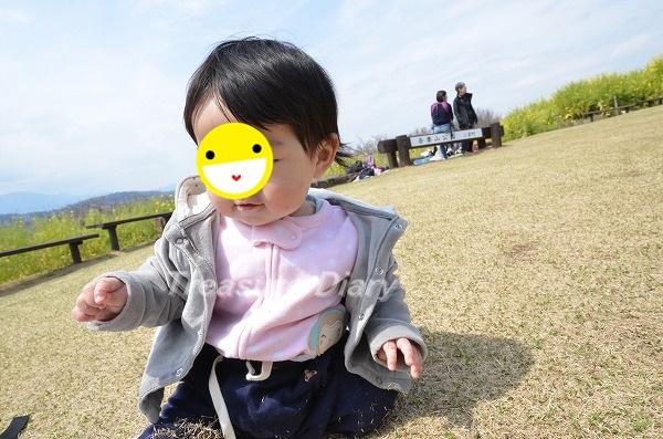 DSC_7675_20170325_3731.jpg