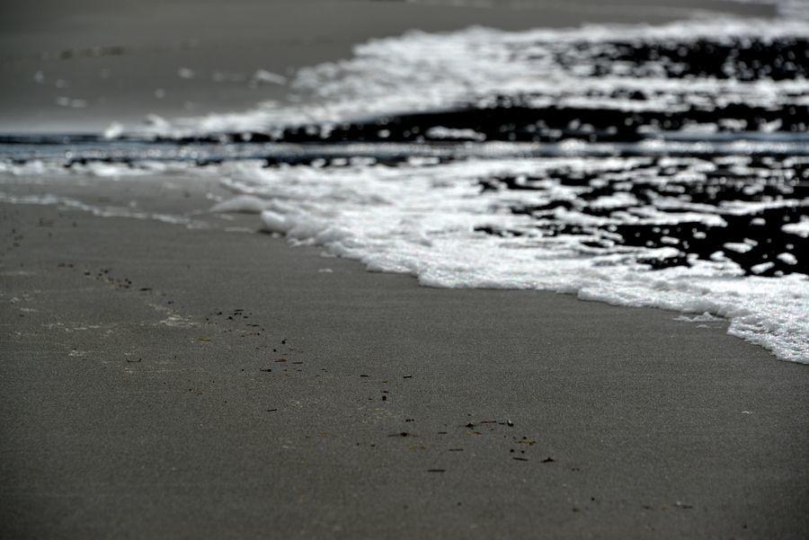 冬の日本海 砂浜-1