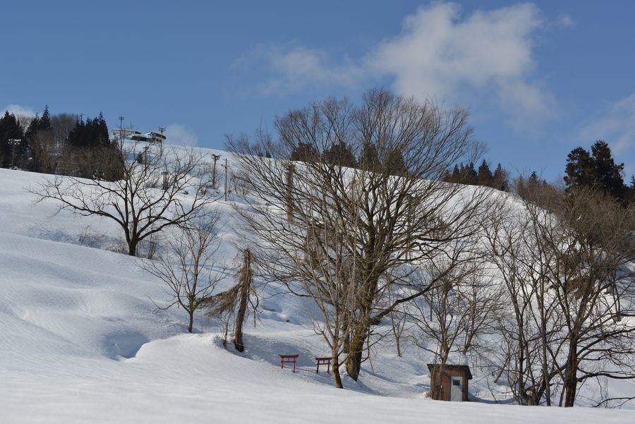 スキー場 跡-3
