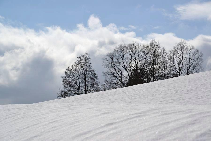 スキー場 跡-5