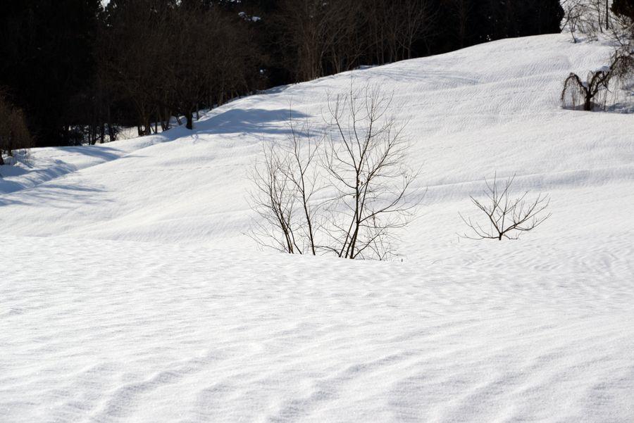 スキー場 跡-6