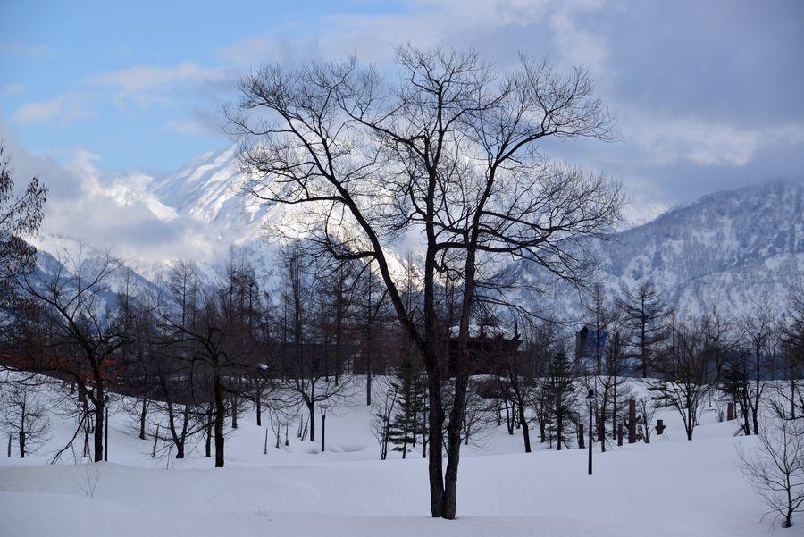 雪の美術館-4