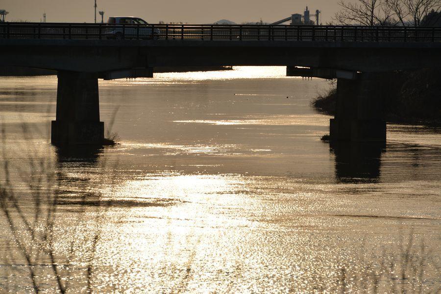 河に照らして-2