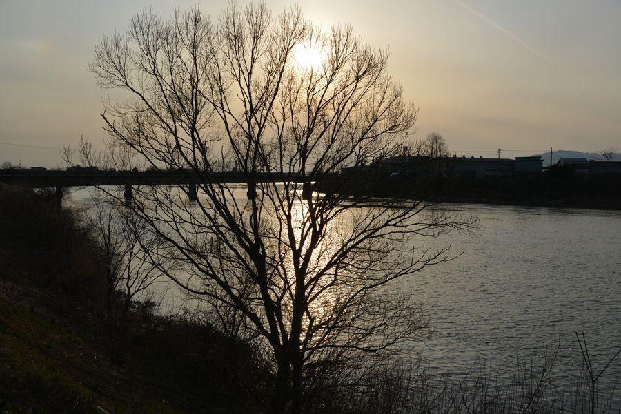 河に照らして-3