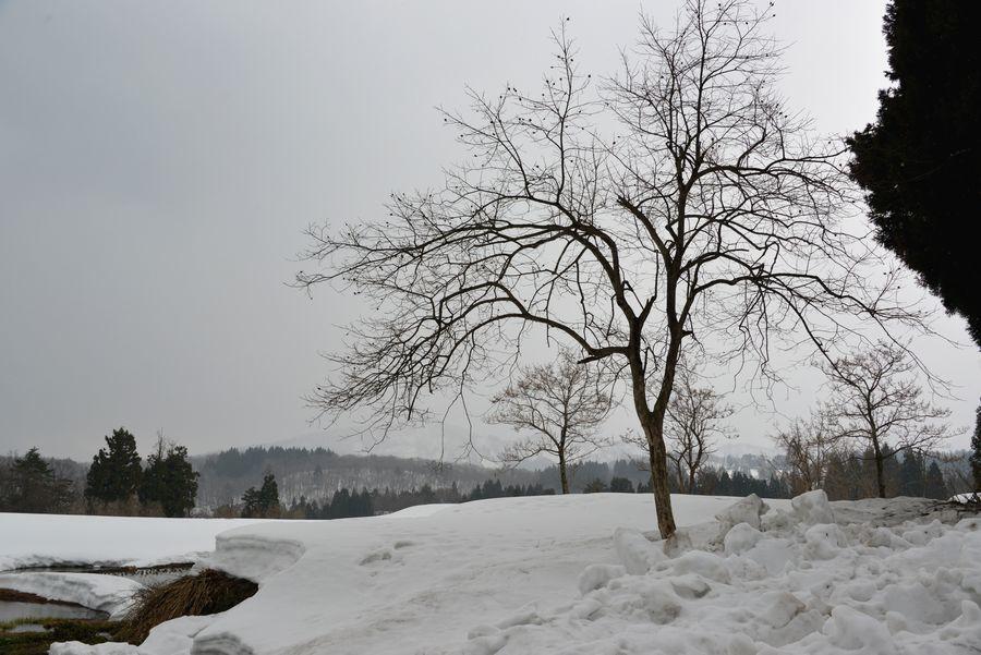 残雪残る山里-6