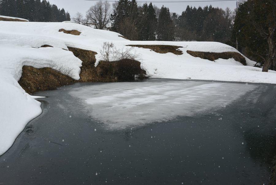 棚田の残雪-4