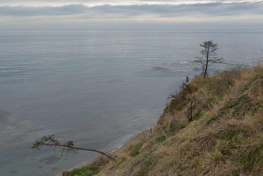 海を望む-3