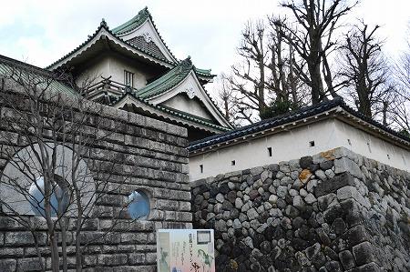 DSC_富山城1811