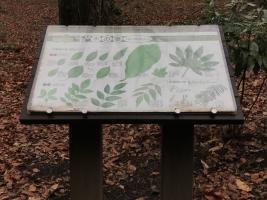 自然体験林解説板リニューアル前