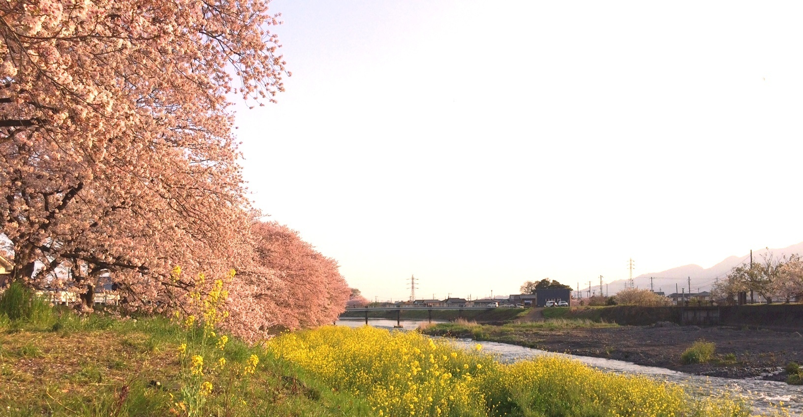 IMG_1527-2.jpg