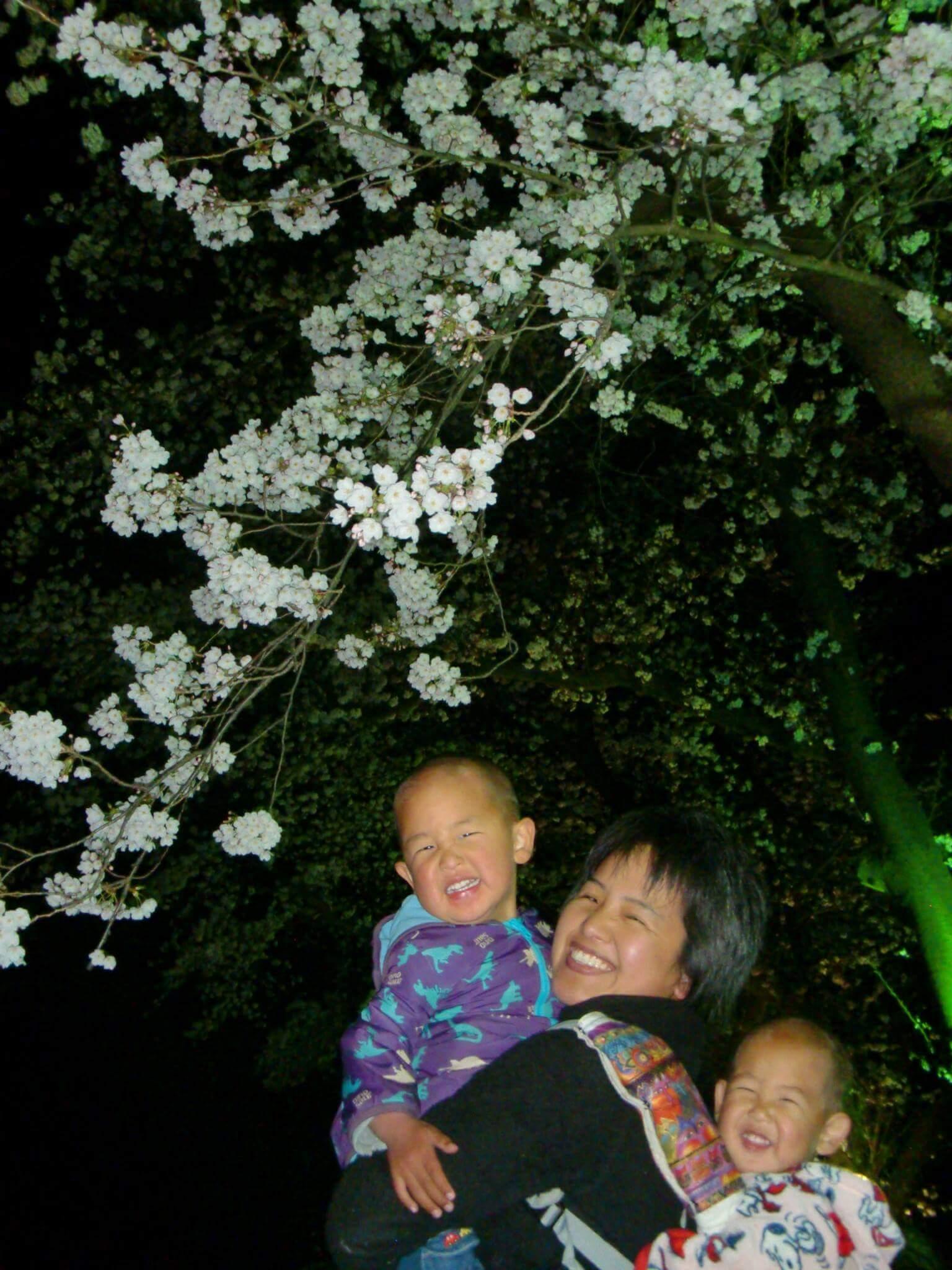 夜桜 くぬぎ山