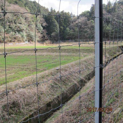 柵で囲った圃場