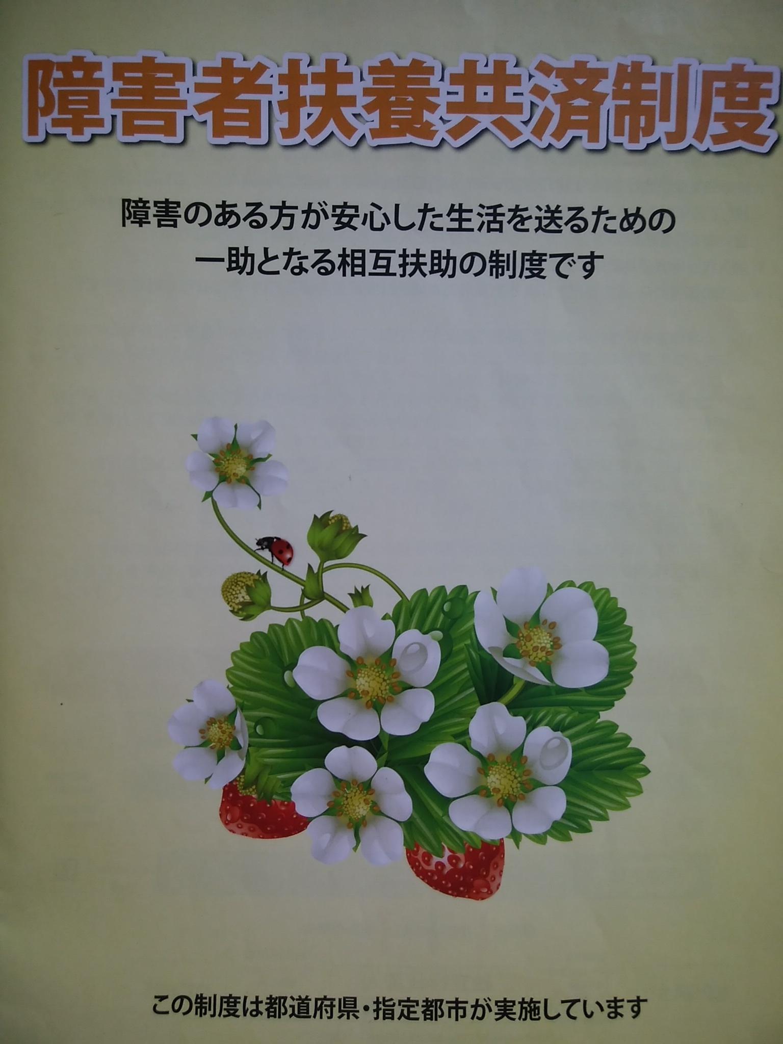 kyousai1.jpg