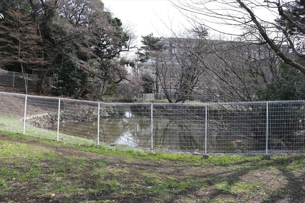 坂を降りきったところにある池
