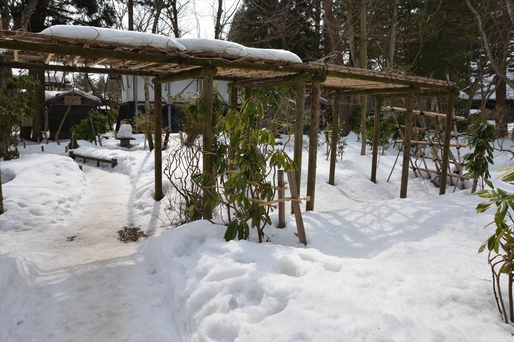 池泉回遊式庭園_2