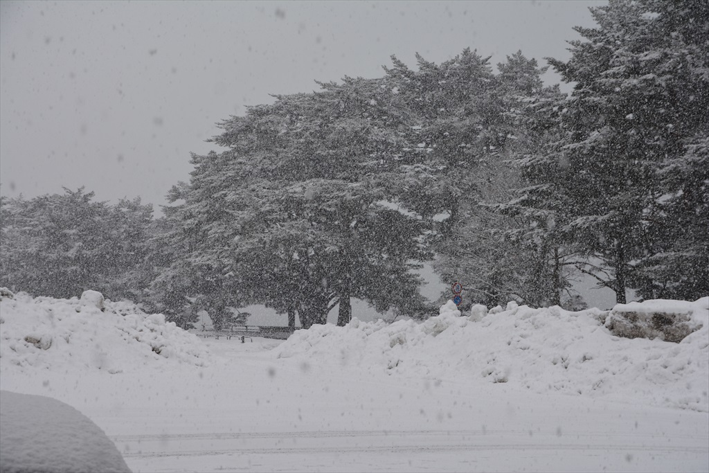 やっぱり田沢湖を見ておきたい_1