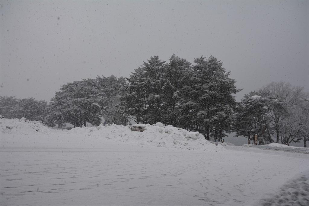 やっぱり田沢湖を見ておきたい_2