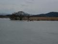 170401西の湖では、カヌー練習中