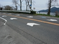 170401湖岸道路を渡って、反対側の分離自転車道へ