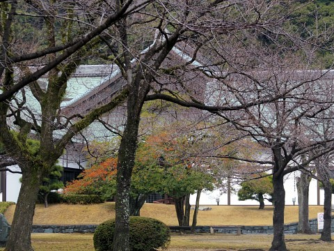 banritokushima20.jpg