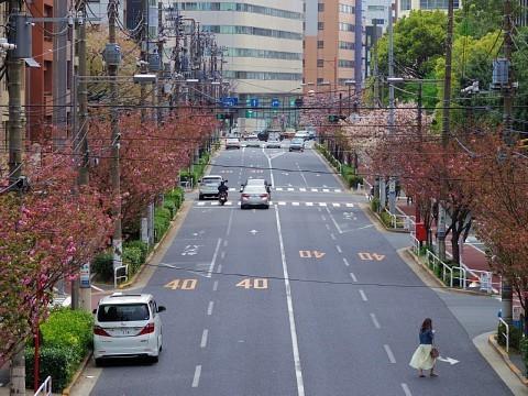 jolunchogawa17.jpg