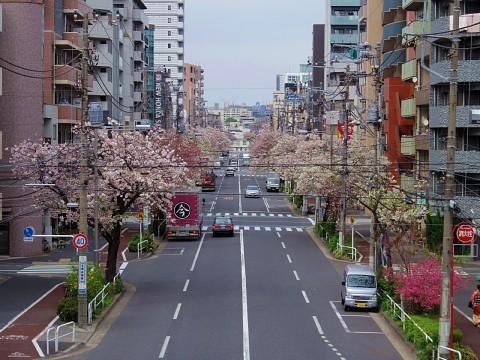 jolunchogawa18.jpg