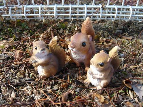 ブログ0304森の仲間たち リス