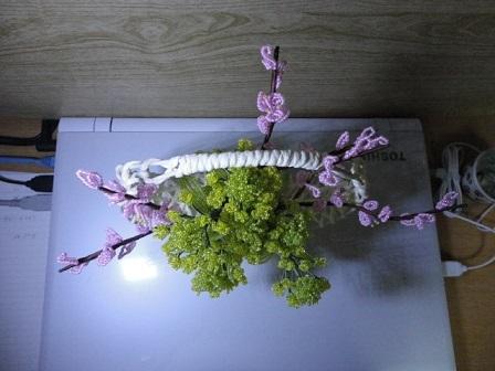 桃と菜の花②