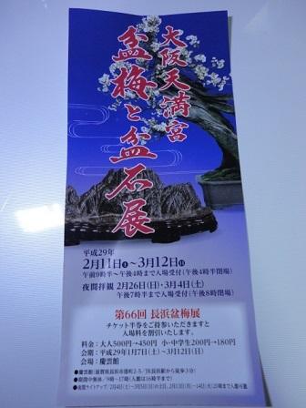 2017年大阪天満宮盆梅と盆石展①