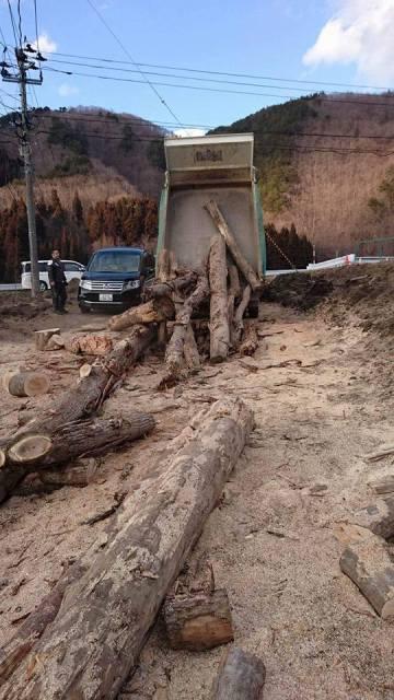 追加で運び込まれた流木。