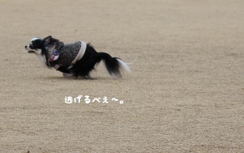 IMG_1143.jpg