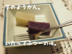 P3270020.jpg