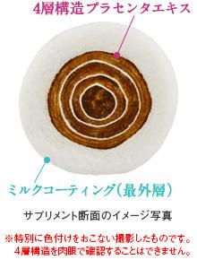 ミルクプラセンタ 断面図