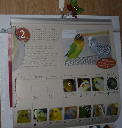 6_カレンダー