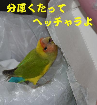 2_牛乳パック