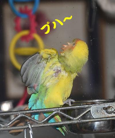 2_きもちいい