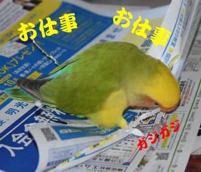4_お仕事