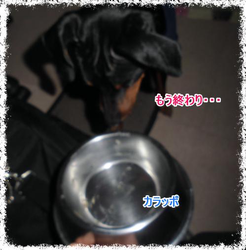 からっぽ_0214
