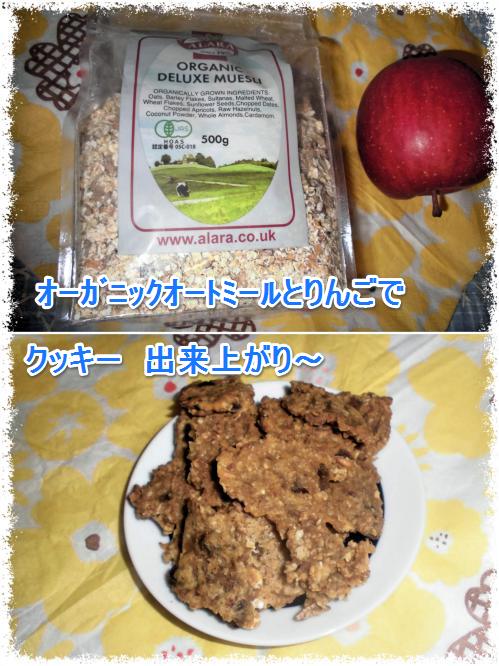 クッキー_0223