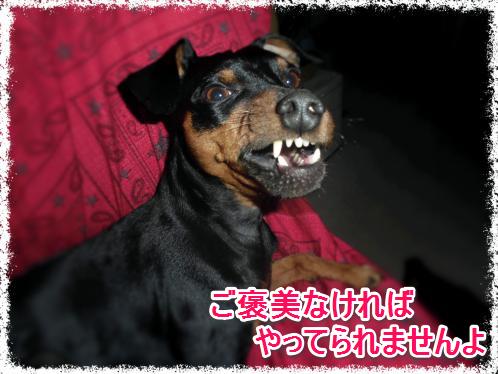 ご褒美_0223