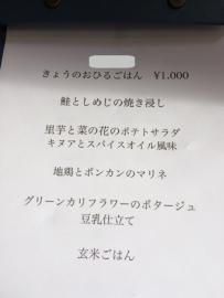 00091p (1)