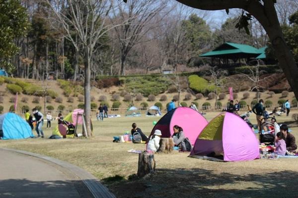 006丸山公園