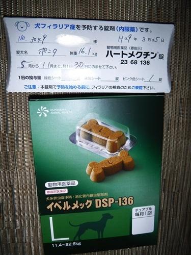 DSCF1271薬