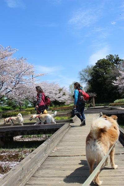 006山崎公園