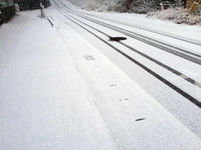 鹿児島雪1-2