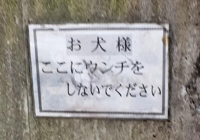 福岡出張1-4