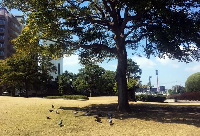 公園にて1