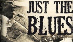 1652FICqWQ2Fjust-the-blues-real-delta-blues-x240-8oj.jpg